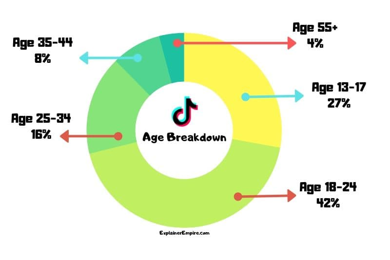TikTok app users sorted by age infographic